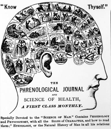 L0000992 Phrenology: Chart